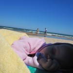 Lillie Napping on the beach